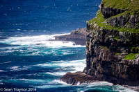 2014-07 Cape_St.Mary-353a
