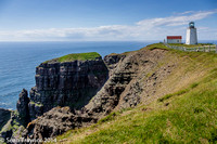 2014-07 Cape_St.Mary-428a